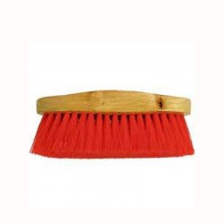 Gala Carpet Cleaning Brush